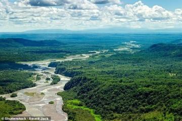 气候变化多可怕50年内亚马逊雨林或许变成大草原
