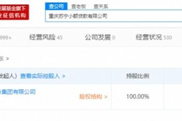 重庆苏宁小贷公司发作工商改变注册资本增至60亿