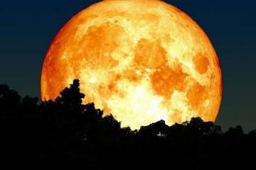 女性月经周期为何与月球运行周期保持短暂同步